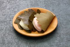 Kashiwa-mochi, japanischer traditioneller Bonbon stockbild