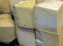 kashkaval的干酪 库存图片