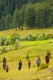 Kashmir Gypsy Goatherders Walking Hill Stock Photos