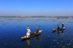 KASHMIR, INDIA - APRIL 28 2018 : The men on the boat are pulling royalty free stock photo