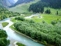 Kashmir Indien Fotografering för Bildbyråer