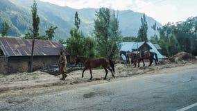 KASHMIR INDIEN - JULI 1, 2017: Trafik från den Srinagar-Ladakh vägen går till det Sonamarg berget, den Jammu and Kashmir staten,  Arkivbild