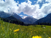 Kashmir. Pahalgam in Indian occupied Kashmir stock photos