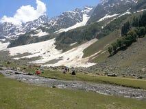 Kashmir Valley con la caduta della neve fotografia stock libera da diritti