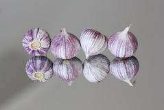 Kashmiri Garlic Fotografia de Stock Royalty Free