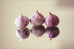 Kashmiri Garlic Fotografia de Stock
