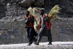 Kashmiri Man with grass Stock Photo
