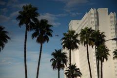 kasino Las Vegas Arkivbild
