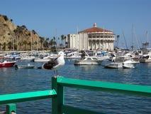 Kasino på Avalon på Santa Catalina Island Royaltyfria Bilder