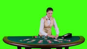 Kasinocroupieranseendet bak den halvcirkelformiga tabellen i en vit skjorta tar korten från korthållaren för lek in stock video