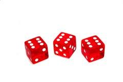 Kasinowürfel Lizenzfreies Stockfoto