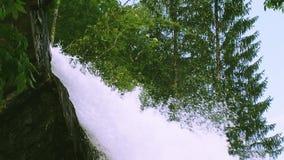 Kaskad av vattenfallet som plaskar i solig dag för grön skogsommar spray Landskap Natur inget arkivfilmer