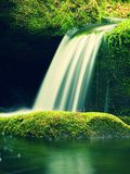 Kaskade auf kleinem Gebirgsstrom Kaltes Kristallwasser fällt über moosige Flusssteine des Basalts in kleines Pool Lizenzfreies Stockbild