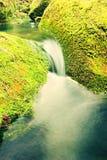 Kaskade auf kleinem Gebirgsstrom Kaltes Kristallwasser fällt über moosige Flusssteine des Basalts in kleines Pool Stockfotos