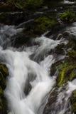 Kaskade des kleinen Wasserfalls über moosigen Felsen, lange Belichtung Lizenzfreie Stockbilder