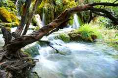 Kaskade des Wasserfalls Stockfotos