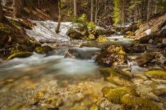 Kaskade von Sibli-Wasserfall. Rottach-Egern, Bayern, Deutschland Lizenzfreies Stockfoto