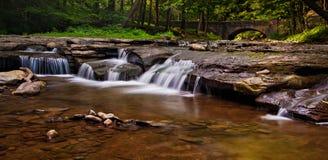 Kaskaden auf Wolf Creek, Letchworth-Nationalpark, New York. Lizenzfreie Stockfotos