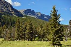 Kaskaden-Berge stockfoto