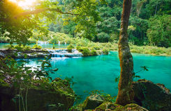 Kaskaden-Nationalpark in Guatemala Semuc Champey stockbilder