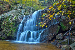 Kaskadenwaldwasserfall und -Herbstlaub Stockfoto