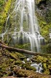 Kaskadenwasserfall über moosigen Felsen des Leuchtenden Grüns Stockfoto
