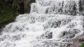 Kaskadenwasserfall Frühling Dzhurynskyi stock video footage