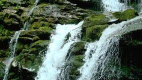 Kaskadenwasserfallspritzen auf Steinen im Wald unter Bergen stock video footage