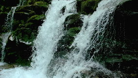 Kaskadenwasserfallspritzen auf Steinen im Wald unter Bergen stock video