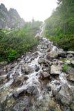 Kaskader av bergliten vik i den Tatra nationalparken Fotografering för Bildbyråer