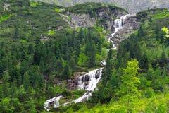 Kaskader av bergliten vik i den Tatra nationalparken Arkivfoton