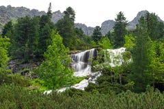 Kaskader av bergliten vik i den Tatra nationalparken Arkivfoto