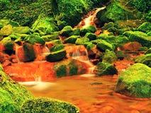 Kaskader i forsar av mineralvatten Röda ferric bottensatser på stora mossiga stenblock mellan ormbunkar royaltyfri bild