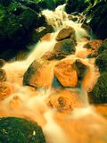Kaskader i snabb ström av mineralvatten Röda ferric bottensatser på stora stenblock mellan gröna ormbunkar royaltyfri bild