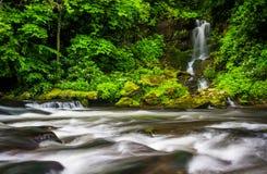 Kaskader och vattenfall på Raven Fork, nära Cherokee norr lovsång royaltyfri foto