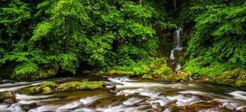 Kaskader och vattenfall på Raven Fork, nära Cherokee norr lovsång arkivbilder