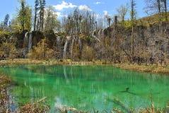 Kaskaderna fyller in sjön Arkivbilder