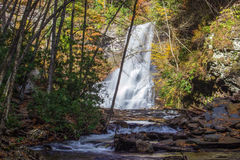 Kaskaderna, Giles County, Virginia, USA Royaltyfri Fotografi