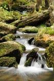 kaskadflod Arkivbild