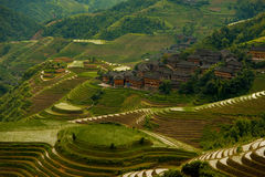 Kaskadierenüberschwemmtes Reis-Terrasse-Dorf Longji Stockfotografie