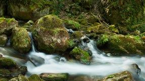 Kaskadieren Sie mit moosigen Felsen im Wald Lizenzfreie Stockbilder