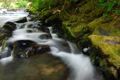 Kaskadierenwasserfälle Stockbild