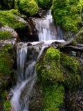 kaskadowa świeżej wody Zdjęcia Royalty Free