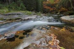 Kaskadowa rzeka Fotografia Royalty Free