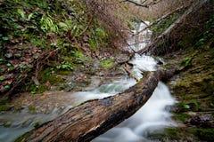 kaskadowa woda Zdjęcie Stock