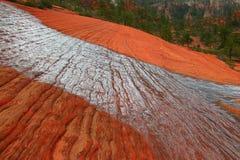 kaskadowy redrock Zdjęcia Stock