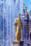 kaskadowych fontann uroczysty pałac peterhof Fotografia Stock