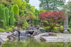 Kaskadvattenfall i japanträdgård i Bonn royaltyfri fotografi