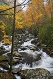 Kaskady i mała siklawa w Great Smoky Mountains, Tennessee, usa obrazy royalty free