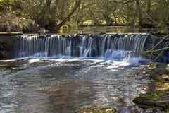 Kaskady, jazu Eller Beck rzeka blisko krowy Wath banka/, Goathland zdjęcia royalty free
